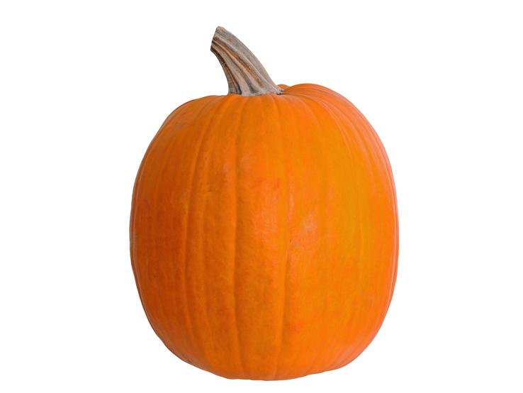 Tekvica na vyrezávanie Halloween