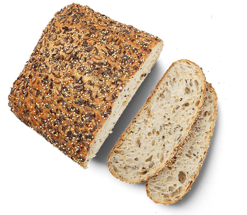 Chlieb