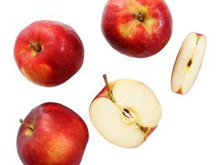 Obrázok Jablko červené